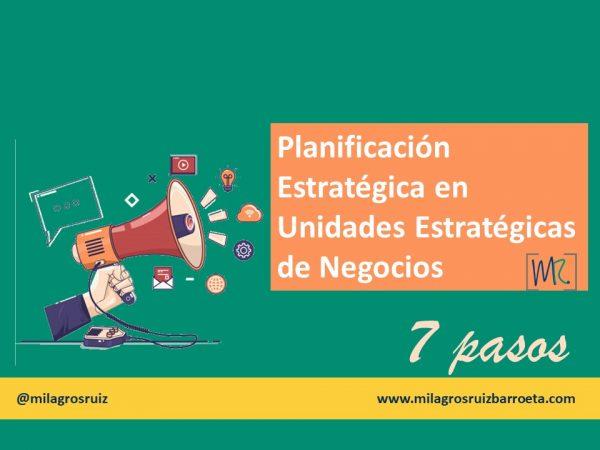 planificación-estratégica-unidad-estratégica-de-negocios