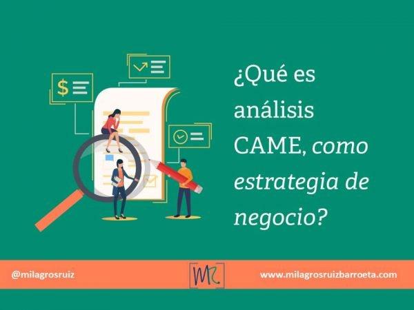 análisis-came